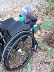 Diana de Vos Gebruikersreview Vicair Wheelchair Cushion User