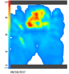 Wheelchair Cushion Pressure mapping Vicair Active 9